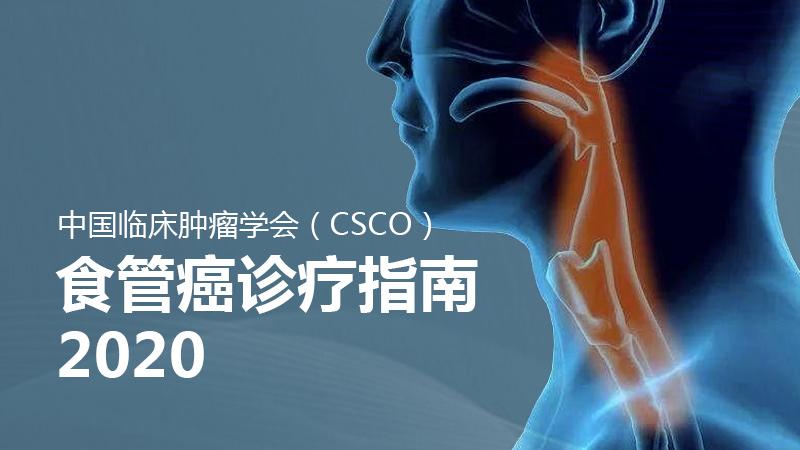 食管癌 诊疗 指南 2020 CSCO食管癌诊疗指南